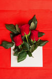 Bouquet of red roses in envelope on red. Bouquet of red roses in envelope  on red background Stock Photography