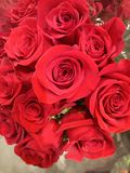 Bouquet of Red Roses. Bouquet red roses flowers nature royalty free stock photography