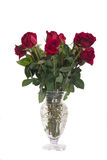 Bouquet of Red Roses in a Glass Vase Royalty Free Stock Photography