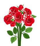 Vector bouquet of red roses. Illustration of bouquet of red roses and gypsophila isolated on a white background Stock Photography