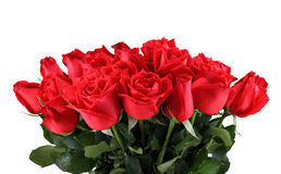 Bouquet of red roses isolated on white background Royalty Free Stock Photos