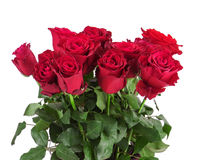 Bouquet from red roses isolated on white background. Royalty Free Stock Photo