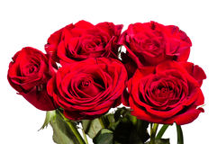 Bouquet of red roses isolated on white Stock Photo