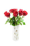 Bouquet of Red Roses Isolated on White Royalty Free Stock Photos
