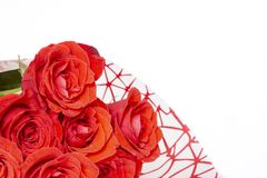 Bouquet of red roses lies on a white background stock photos