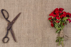 Bouquet of Red Roses and Old Rusty Scissors on jute background Stock Photography