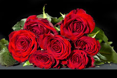 Bouquet of red roses. Over a black background Royalty Free Stock Photography