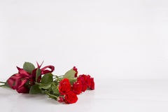 Bouquet of red roses with ribbon on white background Royalty Free Stock Photos