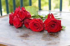 A bouquet of red roses Stock Photo