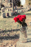 Bouquet of red roses in a vase in a cemetery Stock Photos
