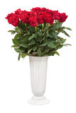 Bouquet from red roses in vase isolated on white background. Stock Photography