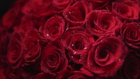 Bouquet of red roses for vilentines day, close up, rotate camera around flowers. Bouquet of red roses as a gift for vilentines day, close up, rotate camera stock video