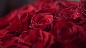 Bouquet of red roses for vilentines day, close up, rotate camera around flowers. Bouquet of red roses as a gift for vilentines day, close up, rotate camera stock footage
