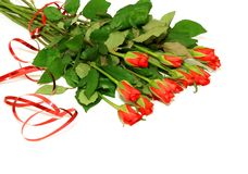 Bouquet of red roses on white. Background Stock Image