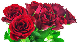 Bouquet of red roses on white background with clipping path Royalty Free Stock Photo