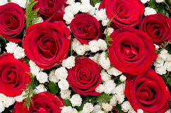 Bouquet of red roses and white flower in Heart shaped Box. Close-up Royalty Free Stock Image