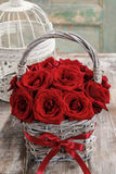 Bouquet of red roses in wicker basket Royalty Free Stock Image