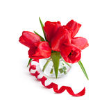 Bouquet of red tulip Royalty Free Stock Photography