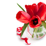 Bouquet of red tulip Stock Image
