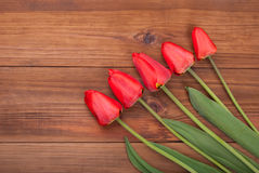 Bouquet of red tulip Royalty Free Stock Photo