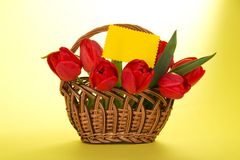 Bouquet of red tulips in basket and an empty card Stock Photos