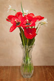 Bouquet of red tulips and daffodils Royalty Free Stock Images