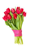 Bouquet of red tulips decorated with ribbon isolated over white Royalty Free Stock Images