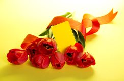 The bouquet of red tulips Stock Images
