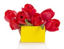 Bouquet of red tulips and empty card Royalty Free Stock Images