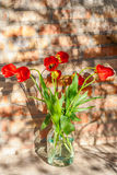 Bouquet of red tulips in a glass jar. On a brick wall background Stock Photos