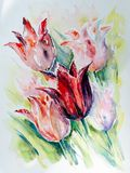 Red tulips on a green background. A bouquet of red tulips on a green background.Picture created with watercolors Stock Photos