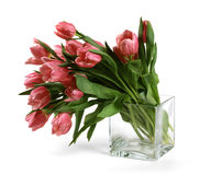 Bouquet of red tulips Royalty Free Stock Photo