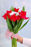 Bouquet of red tulips with ticket for message Royalty Free Stock Photos