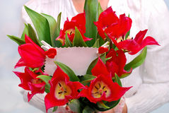 Bouquet of red tulips with ticket for message Royalty Free Stock Photography