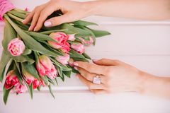 A bouquet of red tulips which a girl hugs her hands on a pink ba Royalty Free Stock Images