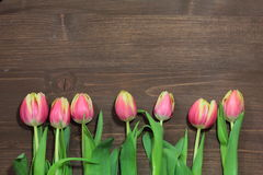 Bouquet of red tulips. On a wooden background Stock Image