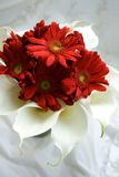 Bouquet in Red and White Royalty Free Stock Photos