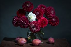 A bouquet of red and white flowers Stock Photography