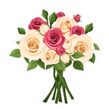 Bouquet of red and white roses. Vector illustration. Stock Photos
