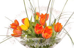 Bouquet of red and white tulips in a film. Bouquet of tulips in a transparent film Stock Photography