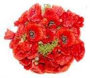 Bouquet of red wild flowers of Papaver rhoeas close up Stock Image