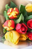 Bouquet of Red and Yellow Spring Tulips Wrapped in Brown Paper. A bouquet of red and yellow tulips, wrapped in cellophane and brown paper, resting on white table Royalty Free Stock Images