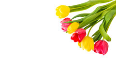Bouquet of red and yellow tulips.  Royalty Free Stock Photos