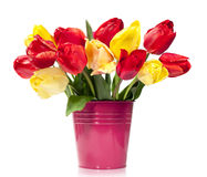 Bouquet of red and yellow tulips in a bucket Royalty Free Stock Photography