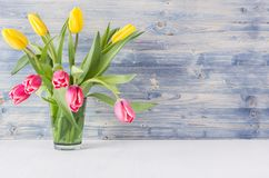 Bouquet red and yellow tulips in green glass vase on blue shabby wooden background. Royalty Free Stock Image