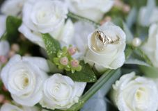 Bouquet and rings Royalty Free Stock Photo
