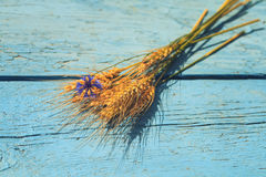Bouquet of ripe grass and cornflower on the wooden table stock image
