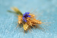 Bouquet of ripe grass and cornflower on the wooden table royalty free stock photos