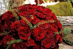 bouquet rose Photo libre de droits