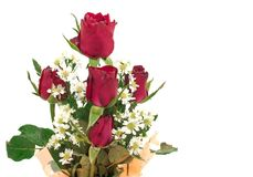 Bouquet of rose. Beautiful bouquet of red rose isolated Royalty Free Stock Image
